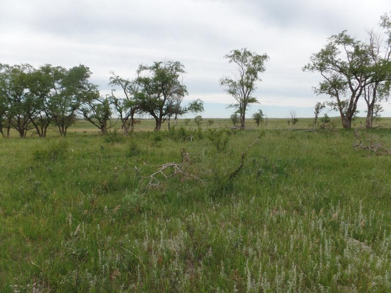 320 Acres Sheridan County Nd Pifer S